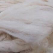 Foaming Silk