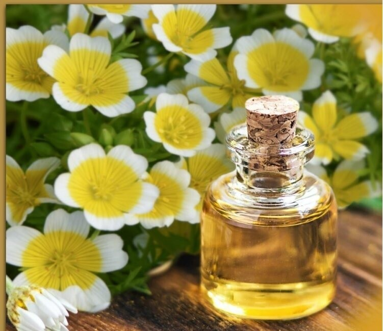 Meadowfoam Seed Oil ( Organic )