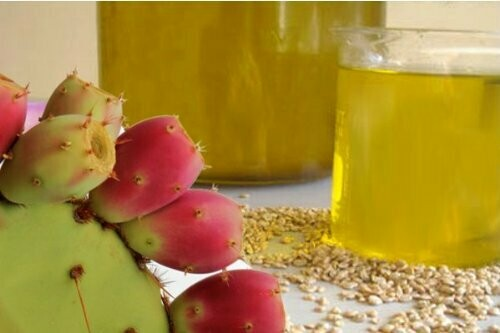 Prickly Pear Seed Oil Organic