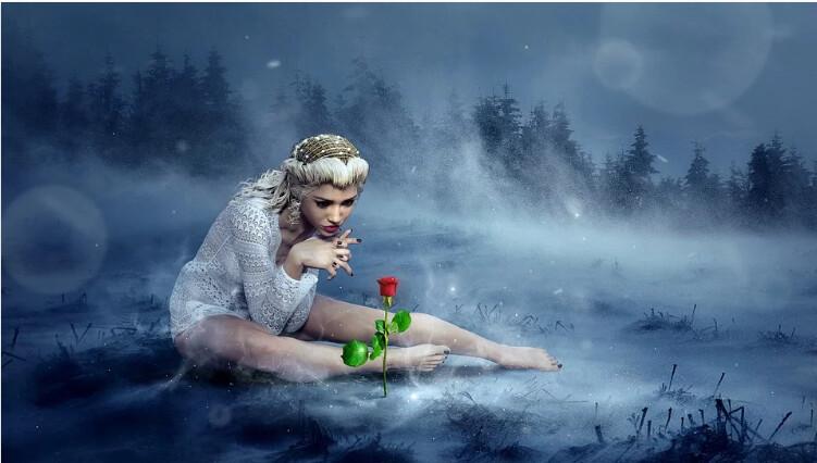 Snow Fairy Lush Type Fragrance