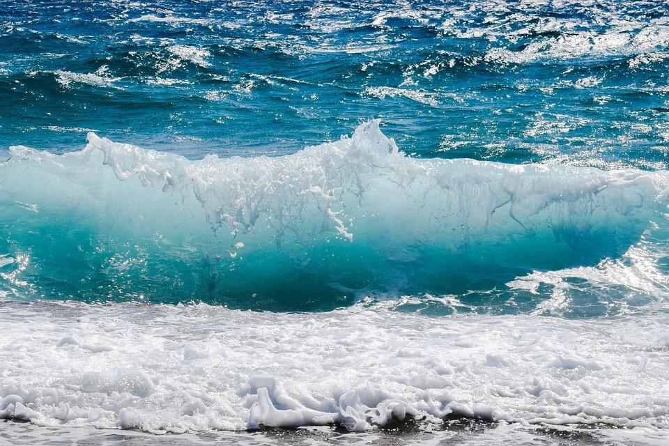 Ocean's 31 Fragrance Oil