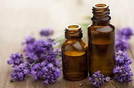 Lavender 40/42 Essential Oil Gallon
