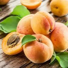 Apricot Kernel Oil Gallon