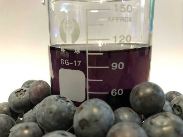 Blueberry Seed Oil Organic