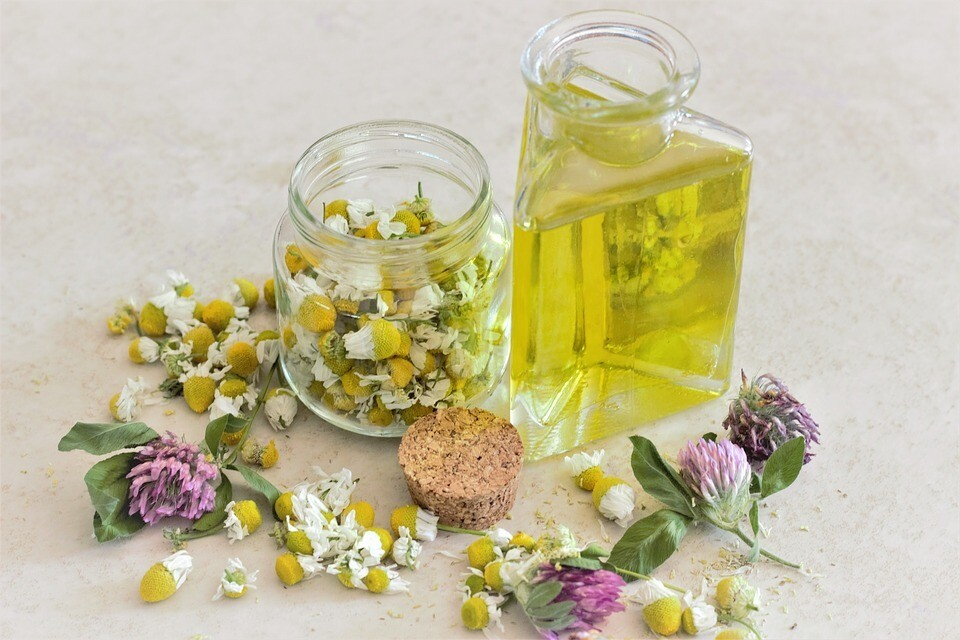 Chamomile Whole