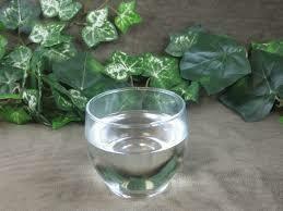 Vegetable Glycerin PALM FREE