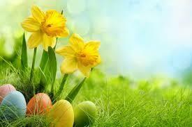 Easter Flowers Fragrance