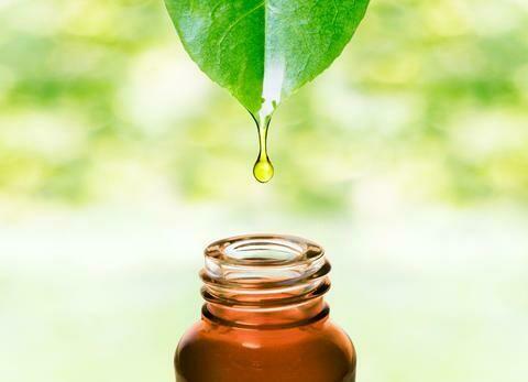 Karanja Oil Organic