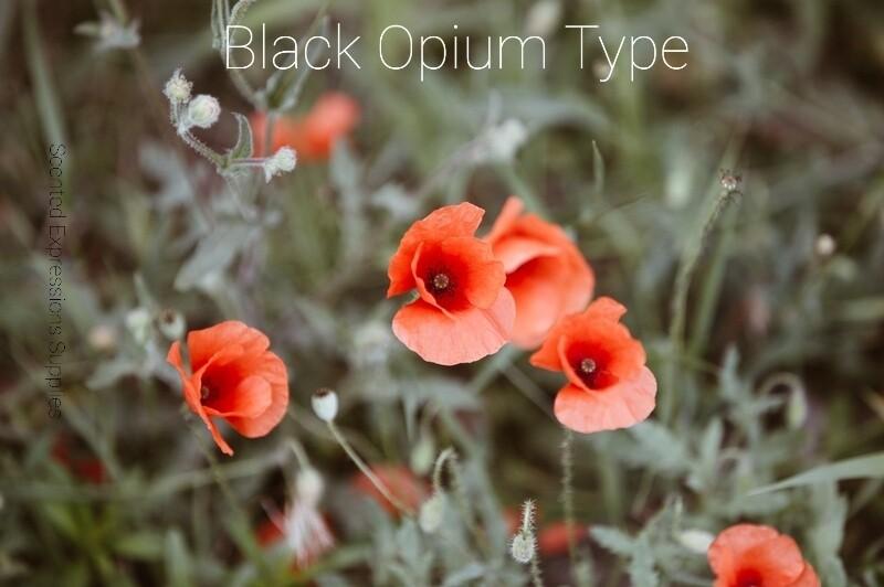 Black Opium Type Fragrance