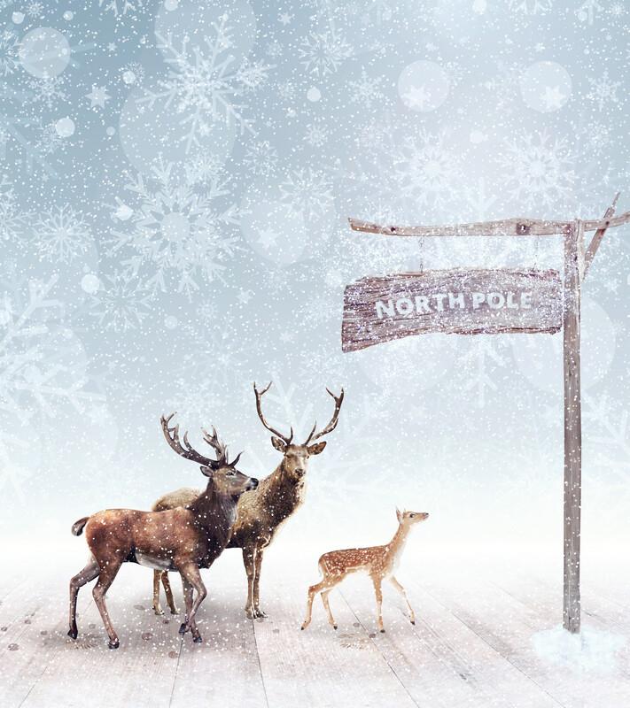 Reindeer's Breath Flavoring (Unsweetened)