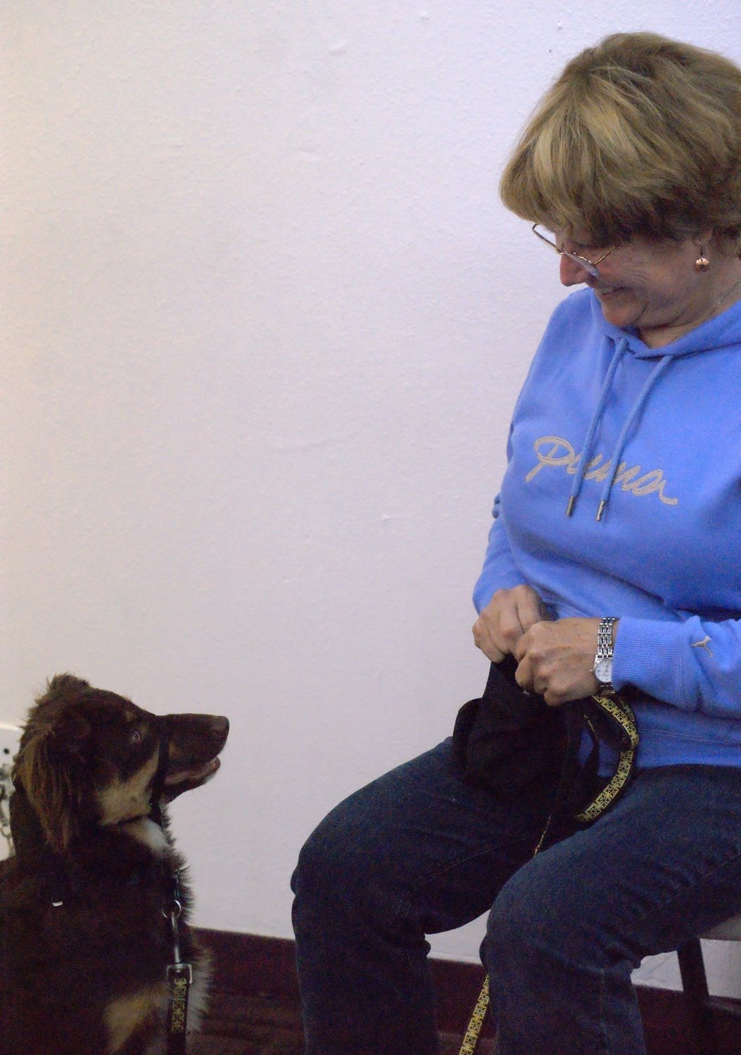 Well Trained Puppies & Dogs, Level I: Mon, 11/16/20 at 6:15 PM  (seminar & 3 1-Hr Classes) Angie, Instructors