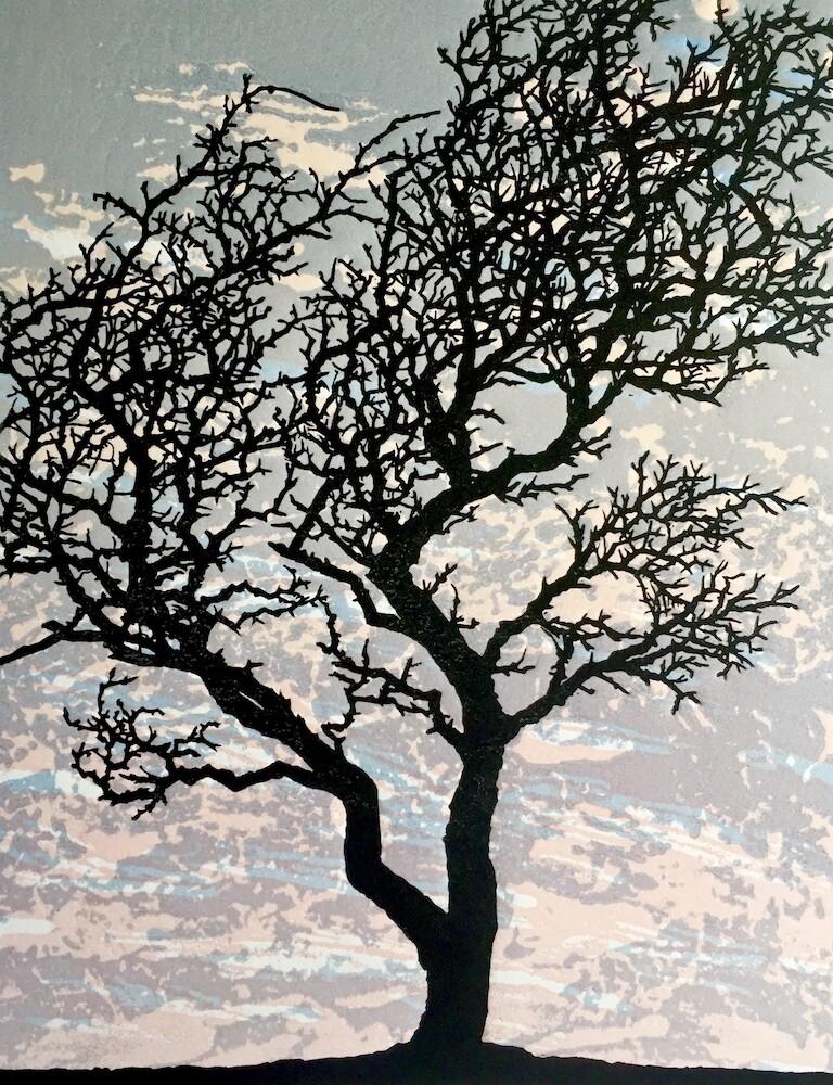 Hawthorn 1, by Richard Shimell