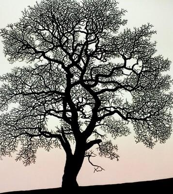 Heart Oak, by Richard Shimell