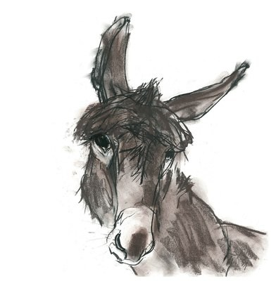 Derek the Donkey, by Barbara Karn