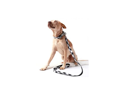 Mimi Green Buffalo Plaid Dog Collar Black/White | M