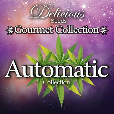 Delicious Seeds - Gourmet Collection автоцветущие сорта (auto/fem.) 02607