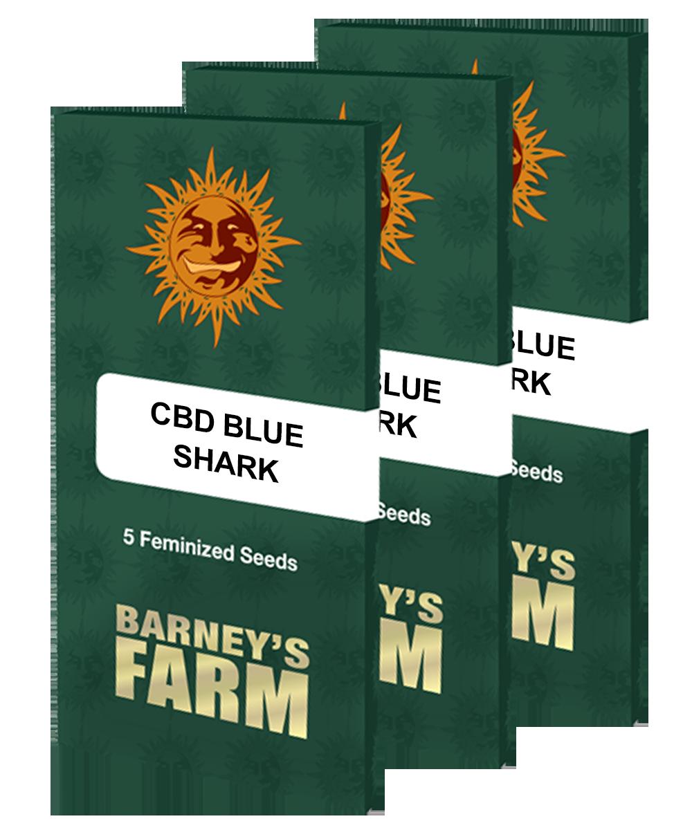 Barney's Farm - CBD Blue Shark (fem.)