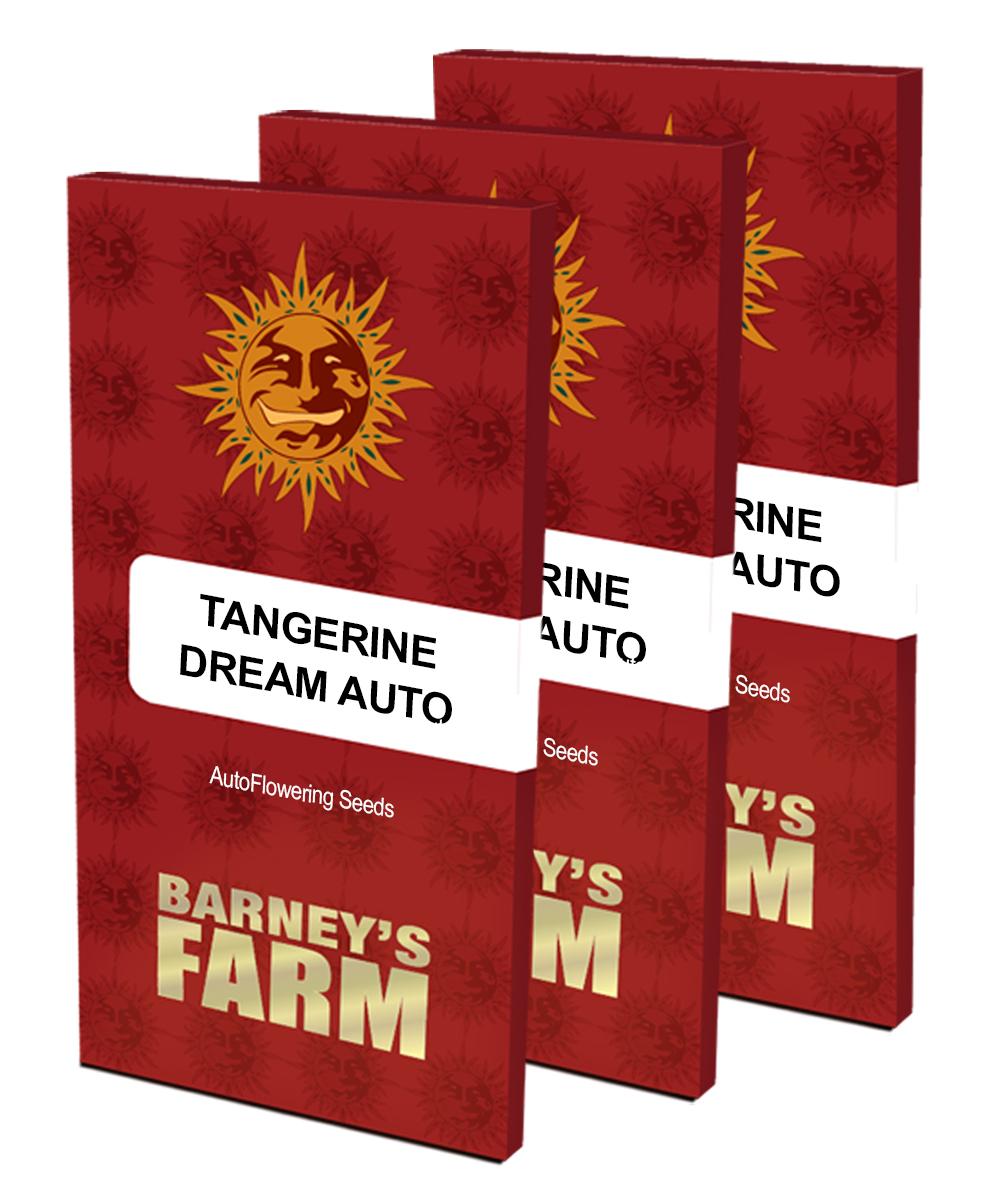 Barney's Farm - Tangerine Dream Auto (auto/fem.)
