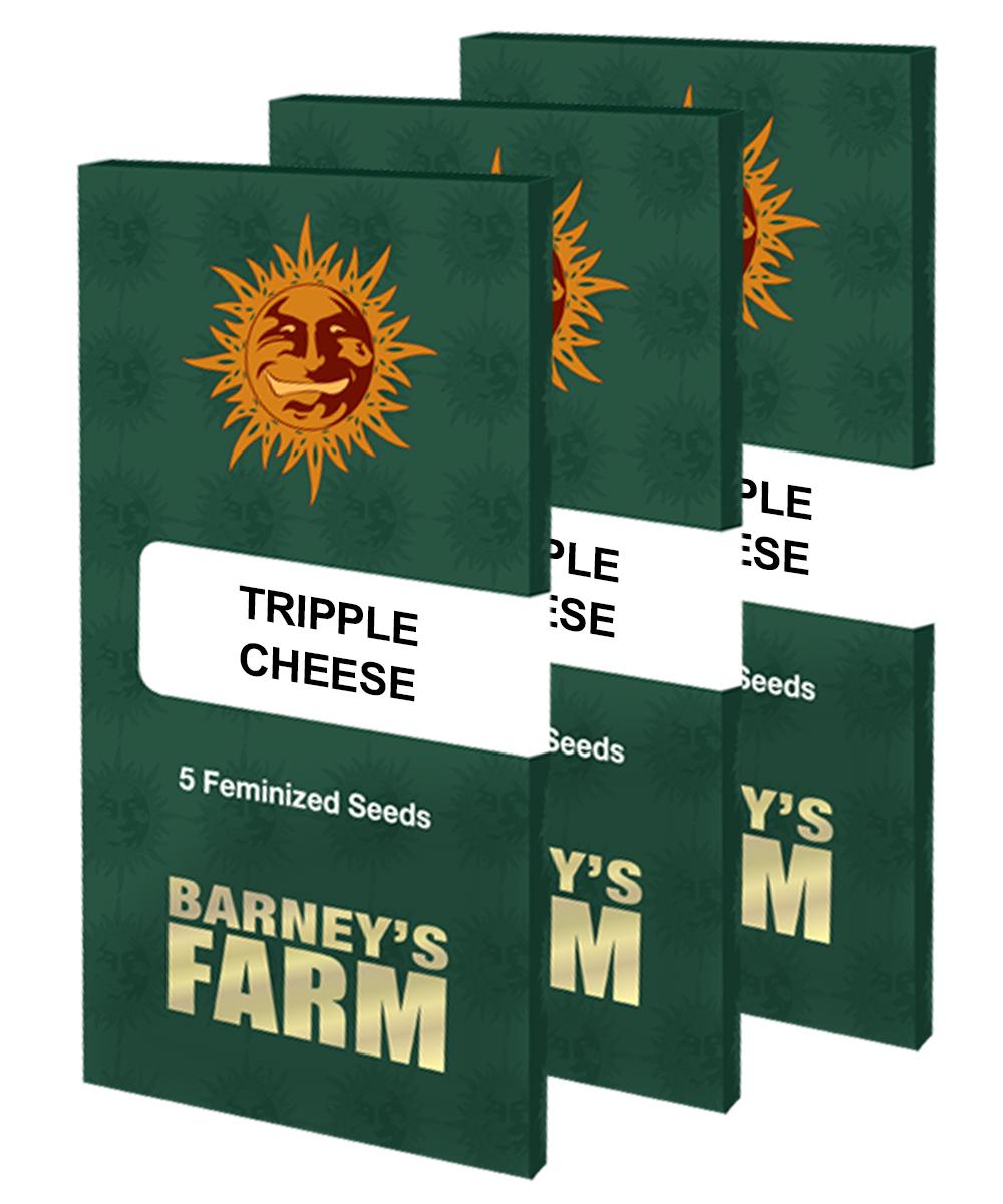Barney's Farm - Triple Cheese (fem.)