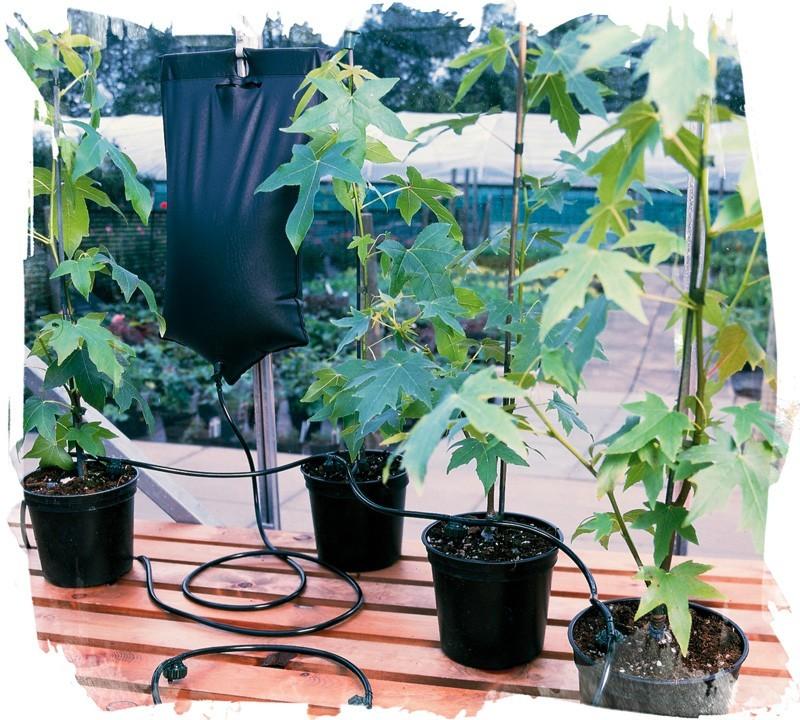 Экономичный комплект для автополива растений