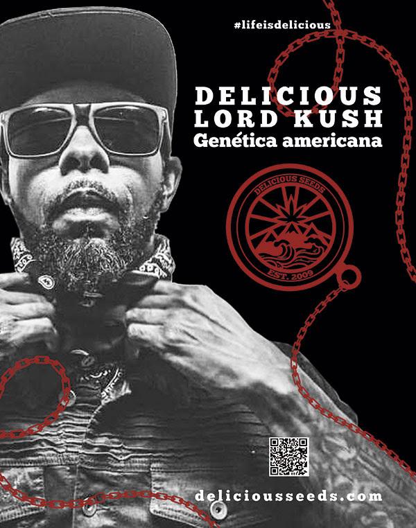 Delicious Seeds - Lord Kush (fem.)