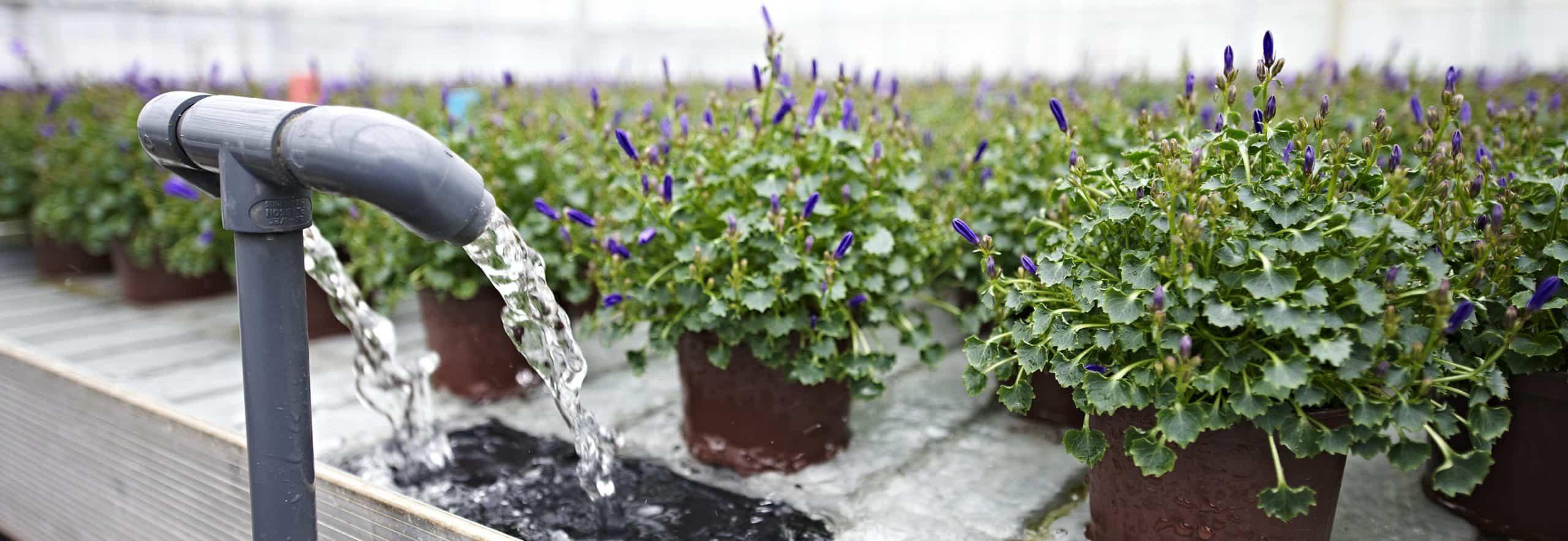 Лотки для выращивания растений Stal & Plast (поверхность для стола)