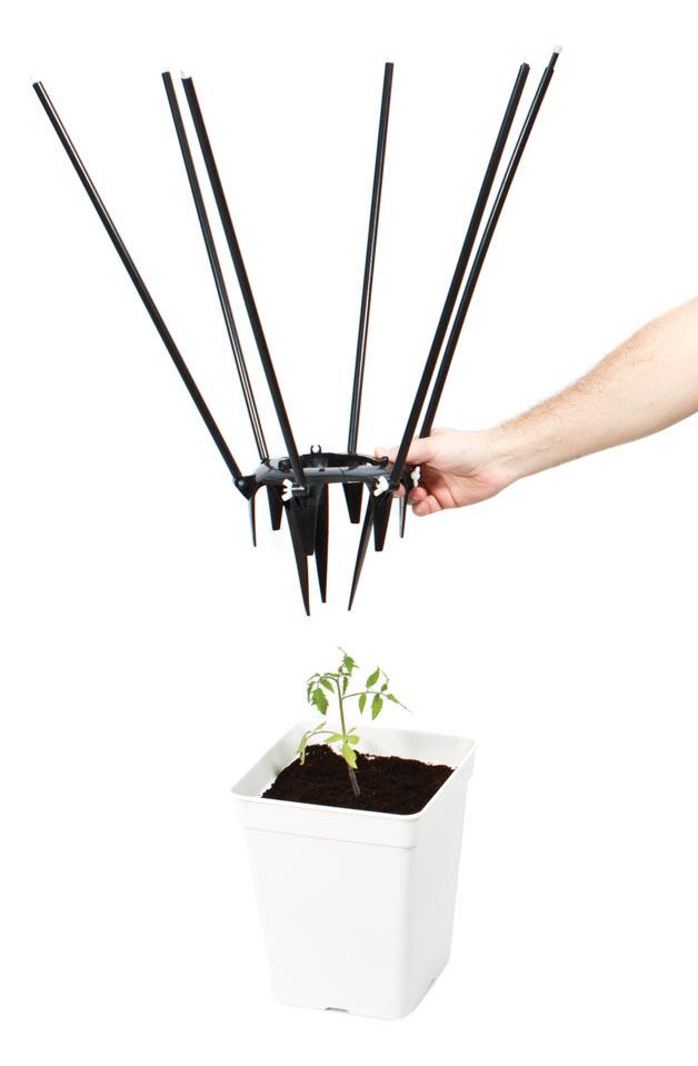 Приспособление для растяжки ветвей растений вширь