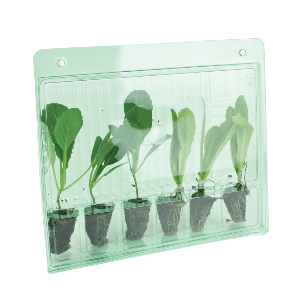 Защитная оболочка для перевозки клонов растений