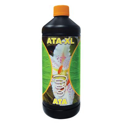 ATA-XL 03834