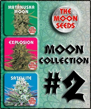 The Moon Seeds - Moon Collection 2 (fem.) moon9