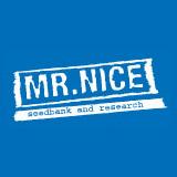 Mr. Nice Seeds - NL5 x Afghan (reg.) SMNN0023