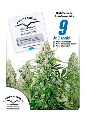 Dutch Passion - High Potency Autoflower Mix (auto/fem.) 04981