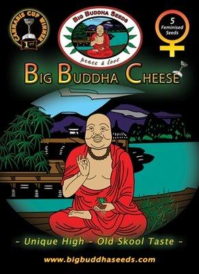 Big Buddha Seeds - Big Buddha Cheese (fem.) 01651