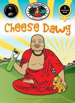 Big Buddha Seeds - Cheese Dawg (fem.) 01652