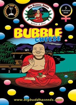Big Buddha Seeds - Bubble Cheese (fem.) 01649