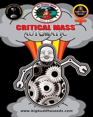 Big Buddha Seeds - Critical Mass Automatic (auto/fem.) 01644