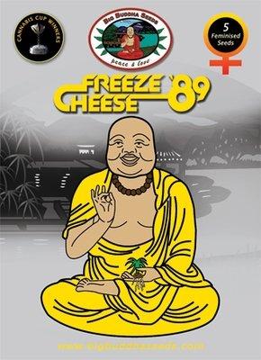 Big Buddha Seeds - Freeze Cheese 89 (fem.) 01656