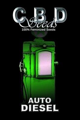 CBD Seeds - Auto Diesel (auto/fem.) 04703