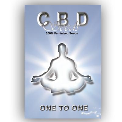 CBD Seeds - One to One (fem.) 01500