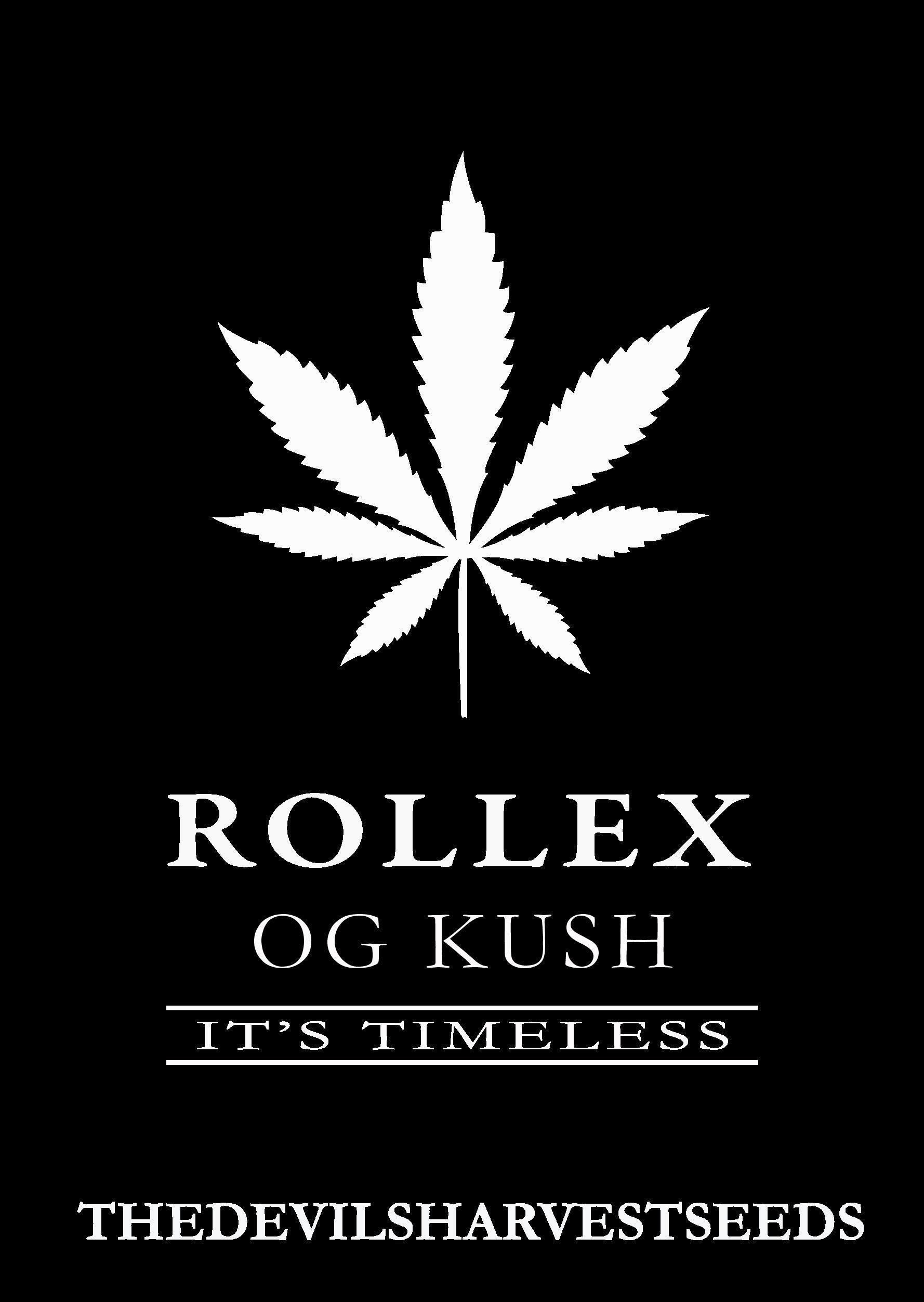 Devil's Harvest Seeds - Rollex OG Kush (reg.)
