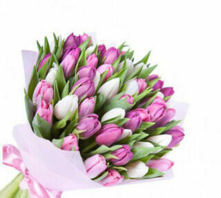 50 Purple and White Tulips Bouquet