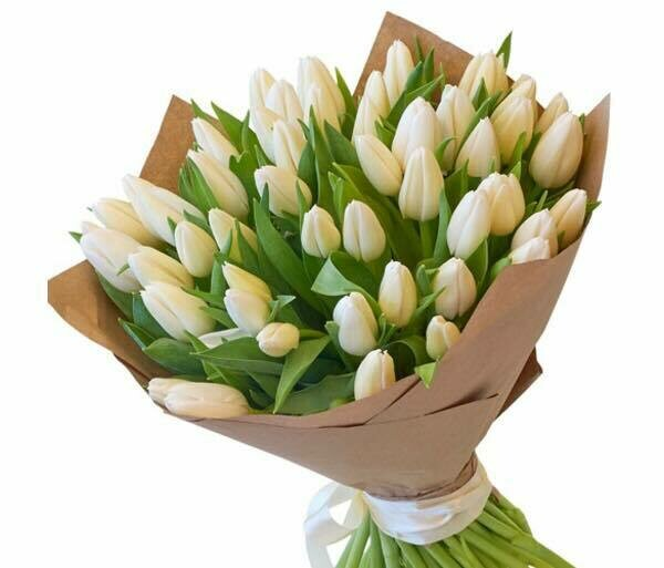 51 White Tulips Bouquet