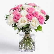 25 Pink and White Roses in a Vase