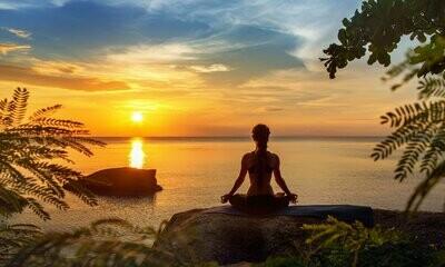 Mindfulness Meditation Course Full Fee