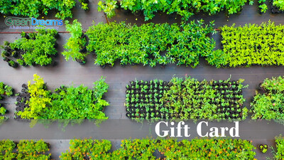 GreenDreams Gift card