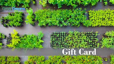 GreenDreams Gift card