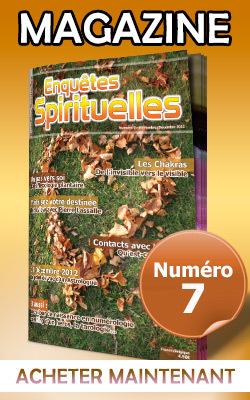 1 Magazine - Numéro 7