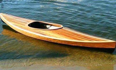 Wood Duck Hybrid