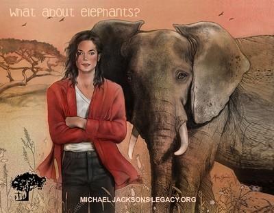 What About Elephants? fridge magnet