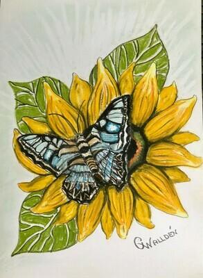 MJ Butterfly